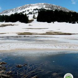 χιονισμένο τοπίο με φόντο το Γρεβενό